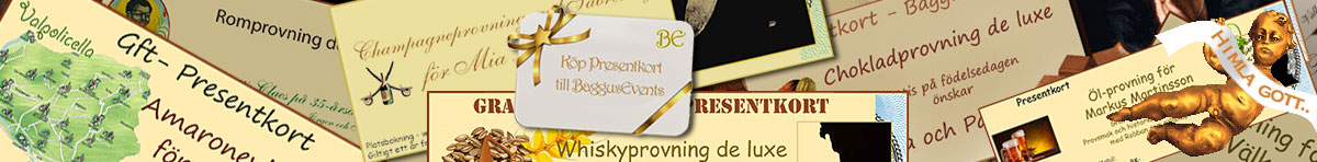 Baggusevents header toppresentkort 4